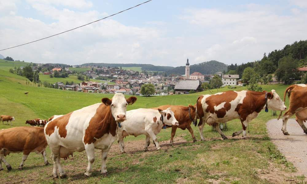 Traditions on the Alpe di Siusi