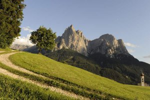 Excursions, hiking and climbing on the Alpe di Siusi 8