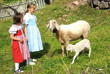 Farm holidays in Castelrotto 1
